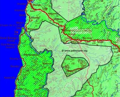 Conflit foncier à Kienké : l'expropriation illégale au coeur de la politique entrepreunariale de la Socapalm